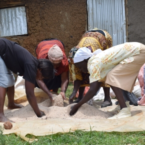 Smallholder farmers' training presents new livelihood horizons for a group of women in western Kenya